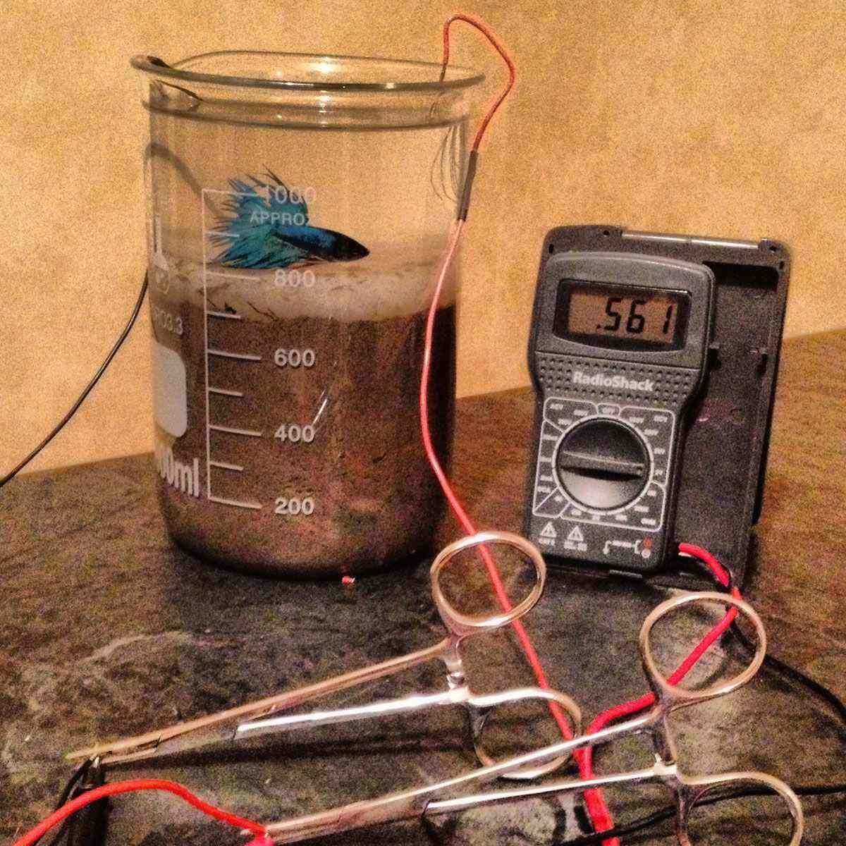 microbial fuel cell 2