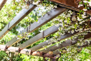 Closeup of patio outdoor spring flower garden in backyard porch of home, zen with pergola canopy wooden gazebo, plants