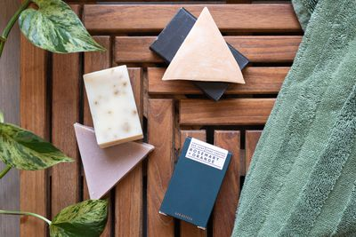 triangle bar soap overhead shot with towel and plant