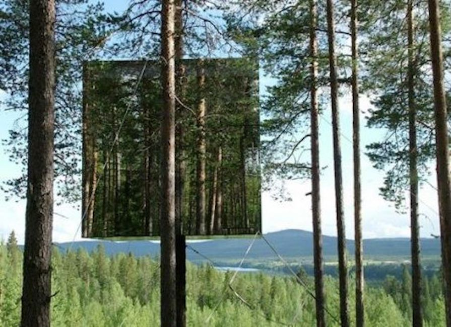 Mirrored box lifted up in the trees