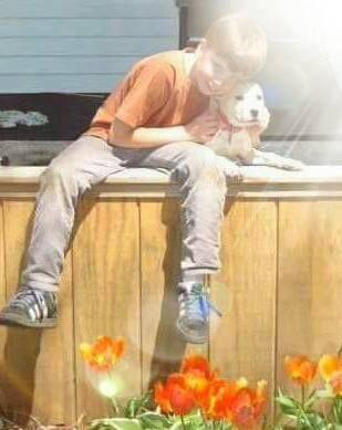A boy hugs his puppy