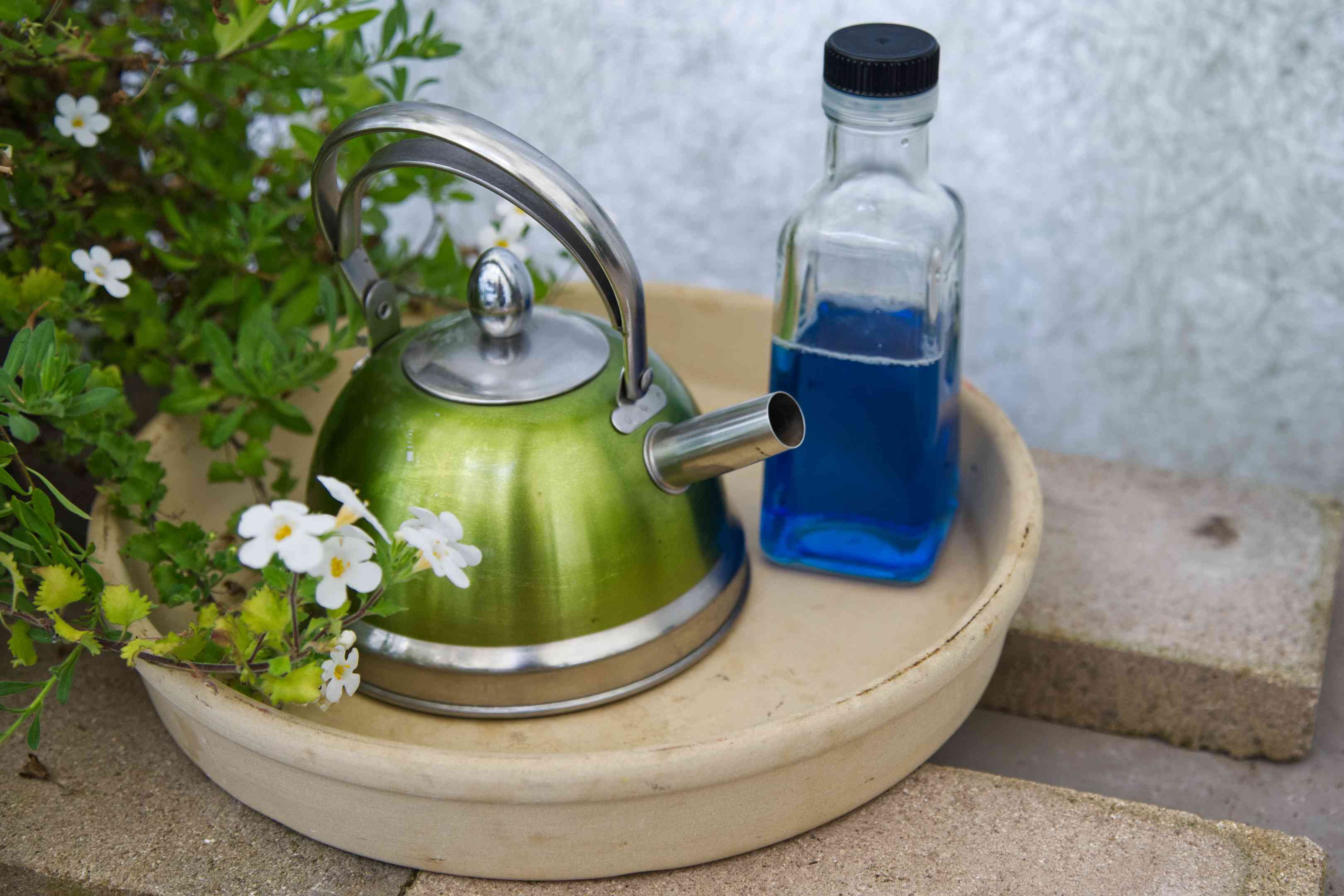 hot water kettle and blue dish soap in glass container outside near flowers