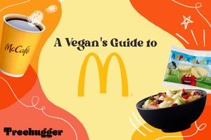 Vegan mcdonald's guide