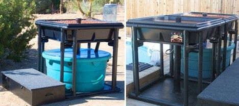 aquaponics usa backyard aquaponic systems photo