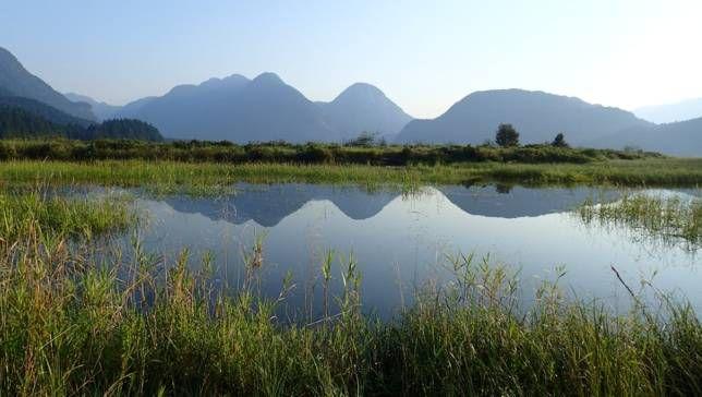 Por qué los métodos de conservación natural son importantes para el futuro de los suministros de agua urbanos