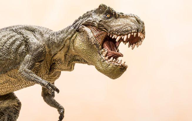 Todo lo que necesita saber sobre el T. Rex pero tenía miedo de preguntar