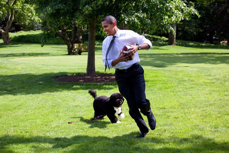 President Barack Obama with his dog Bo