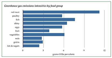 20100226-carbon-footprint-type.jpg