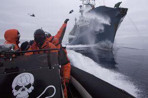 Sea Shepherd fleet throwing a bottle at a whaling ship.