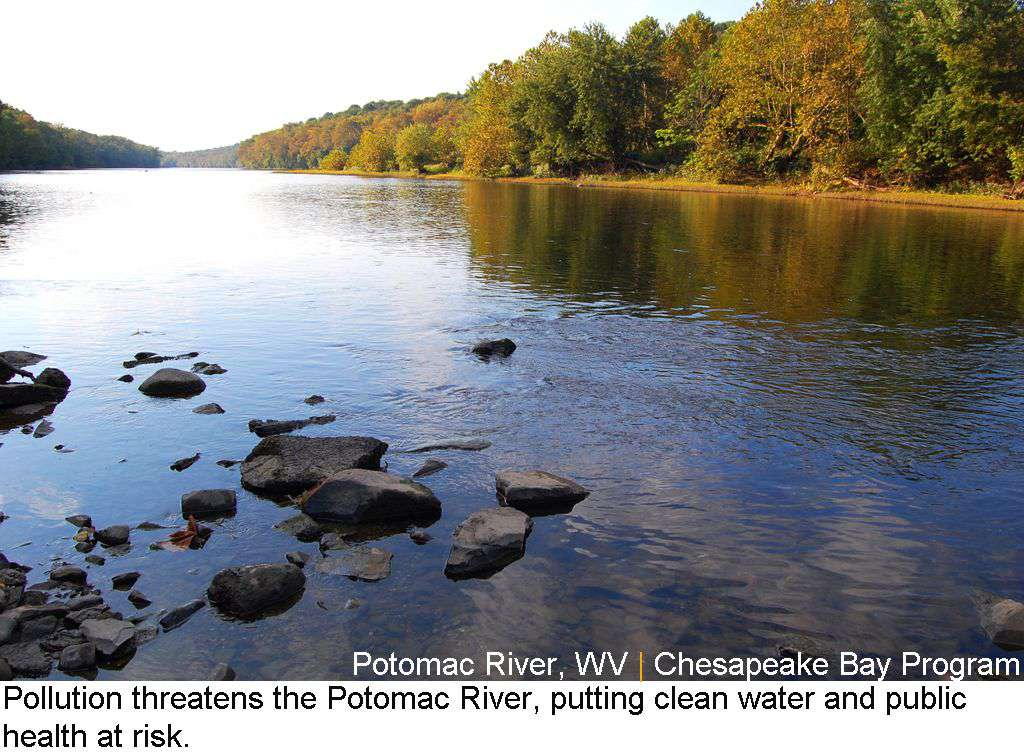 Potomac River Named as America's Most Endangered River of 2012