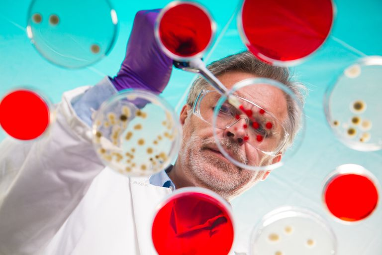 Scientist working with samples as seen from below