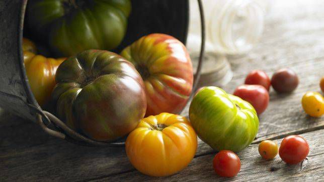 Tomatoes Tasted Much Better 100 Years Ago. Can Their Flavor Be Restored?
