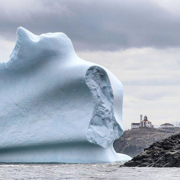 La historia de amor de este hombre con los icebergs te calentará por dentro
