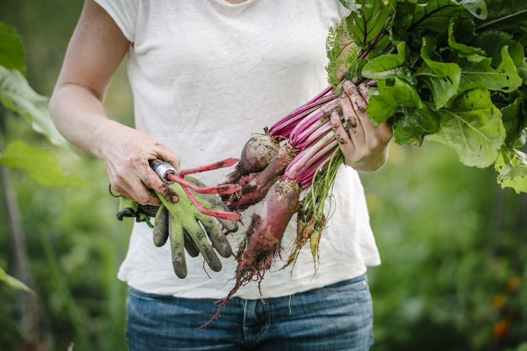 A woman in a white shirt holds a trowel and root vegetables