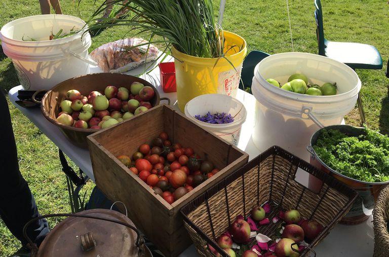 Los alimentos orgánicos no reducirán su huella de carbono, según un estudio