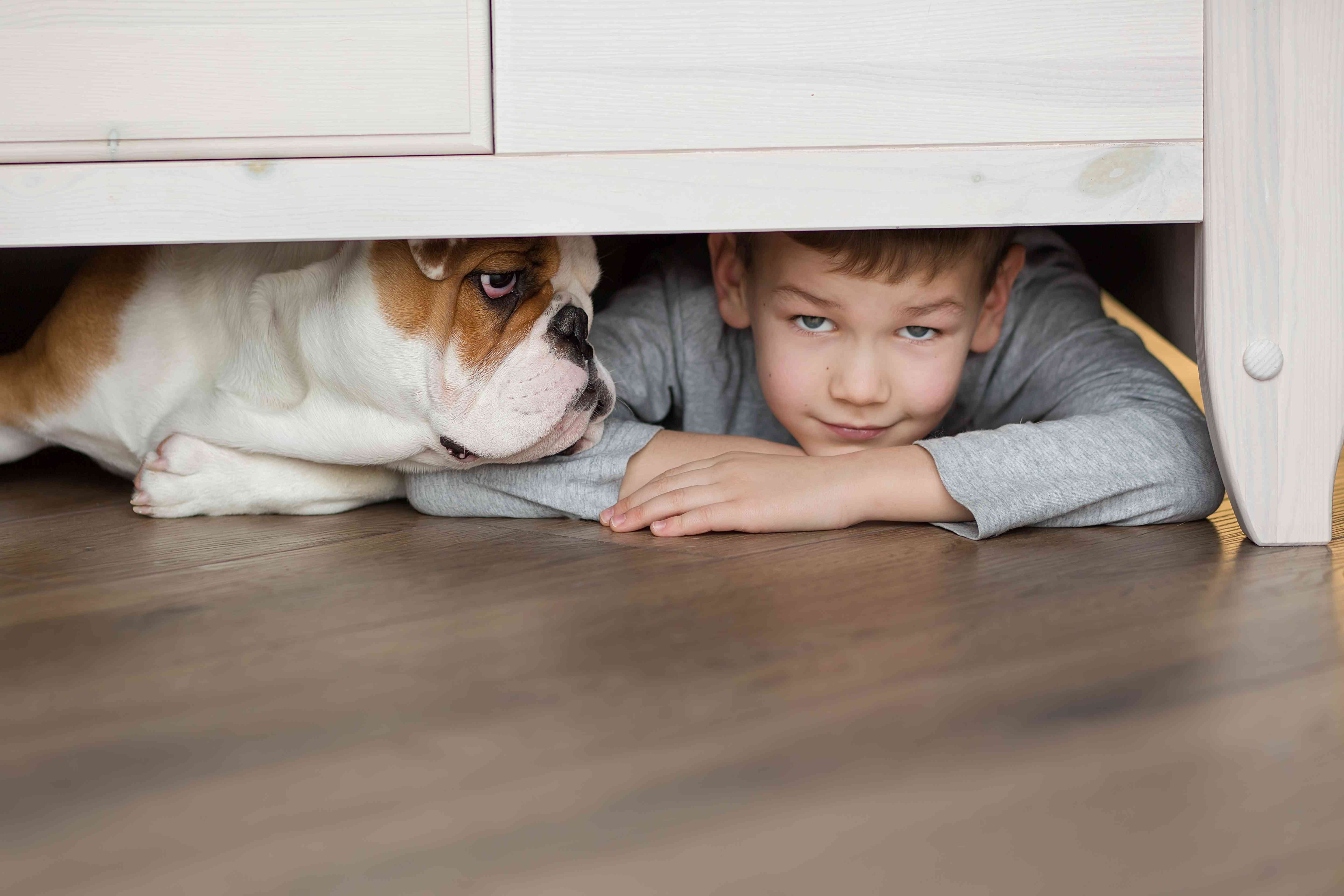 dog and boy hiding under the bed