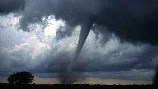 Sharknado en la vida real: 5 casos reales de tornados animales