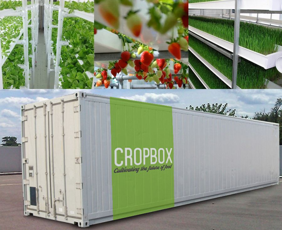 Farm in a Box Produces an Acre's Worth of Crops in a Shipping Container