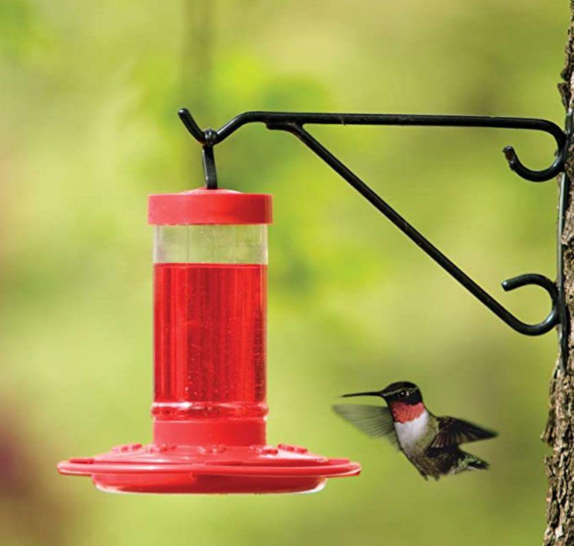 Nature First Hummingbird Feeder
