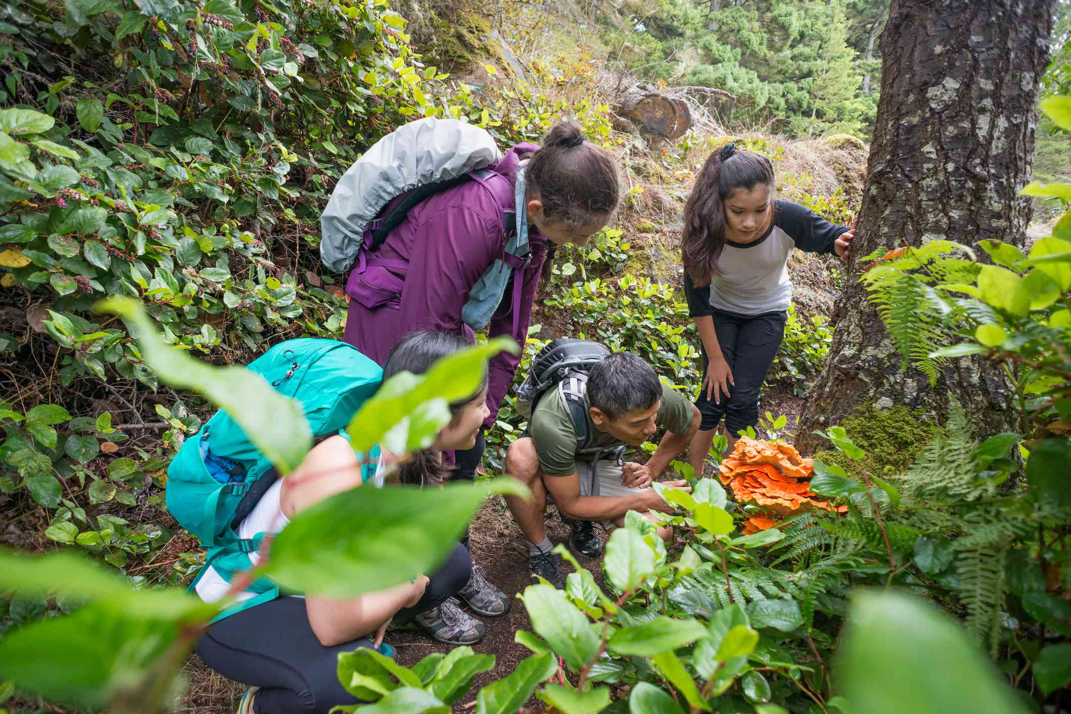 A group young girls with a man looks at an orange edible mushroom in the forest.