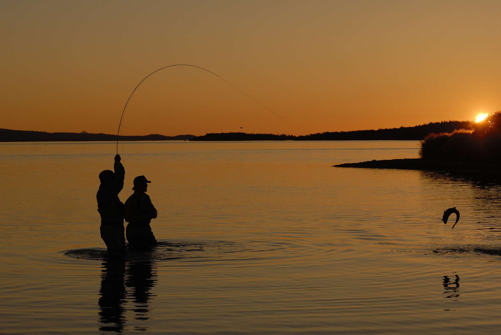 Two men fishing at sunset at Katmai National Park; one man is holding bent rod with fish leaping out of the water