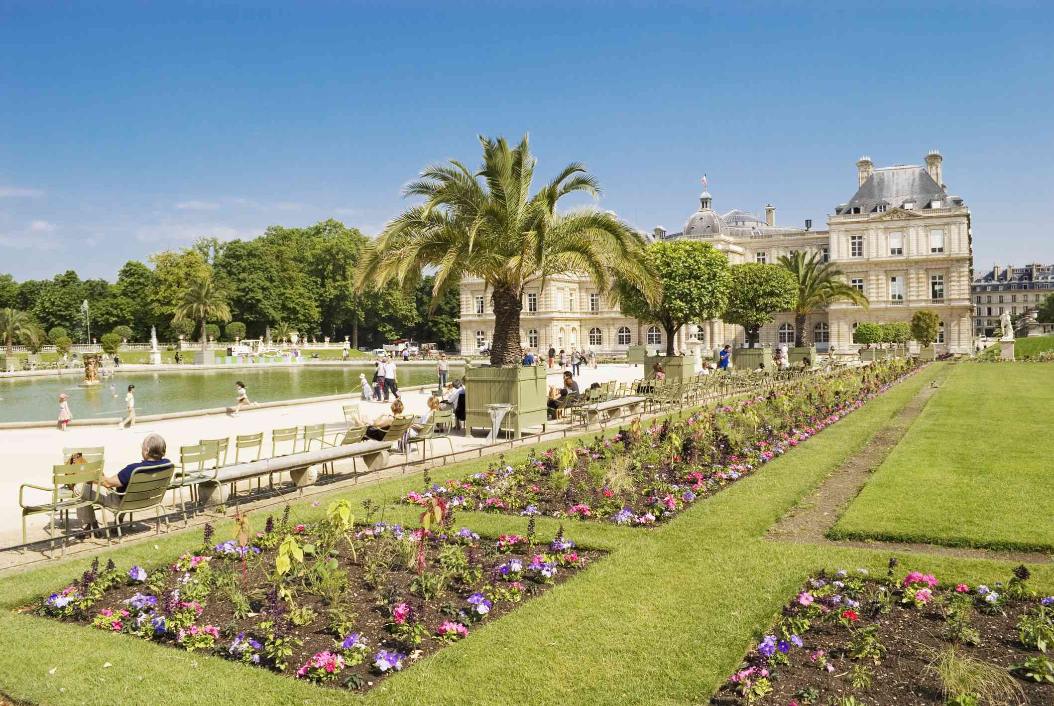 Manicured gardens of Luxembourg Garden in Paris with palm trees and a fountain surrounded by benches under a bright blue sky