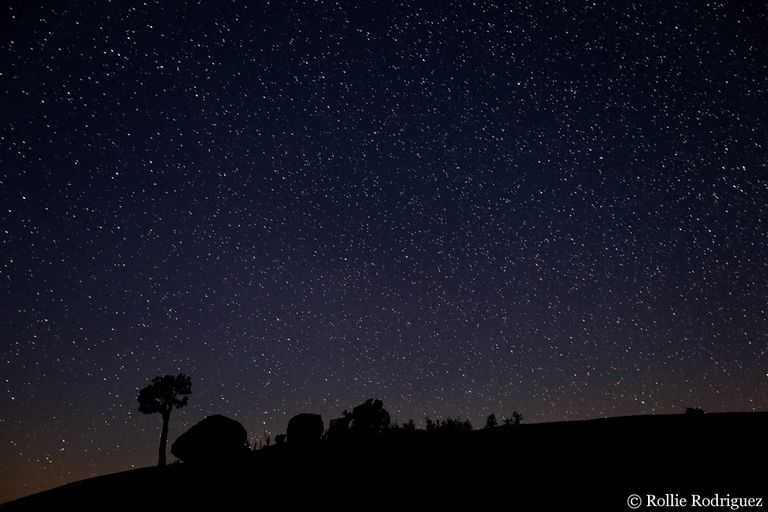 The night sky at Yosemite's Olmstead Point