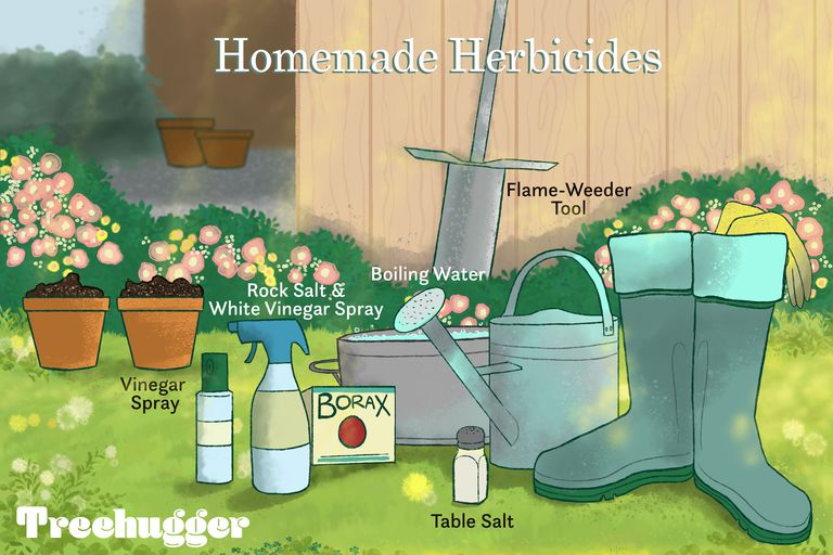 homemade herbicides