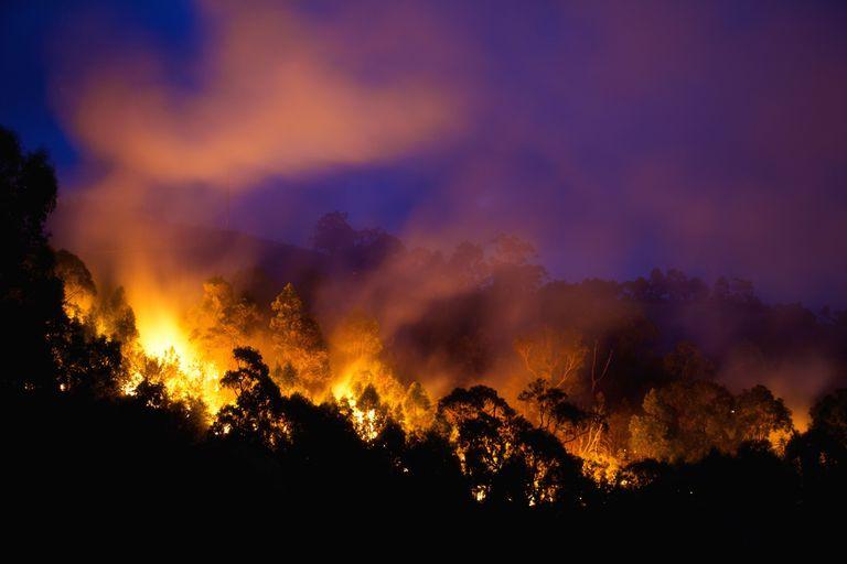 Los incendios forestales australianos generan fenómenos meteorológicos raramente vistos