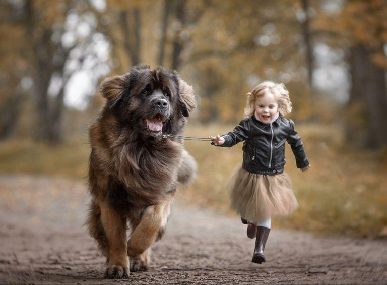 Nada dice amor como un niño pequeño con un perro grande