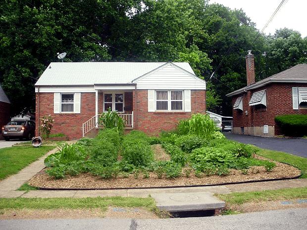 Missouri Front Yard Veggie Garden