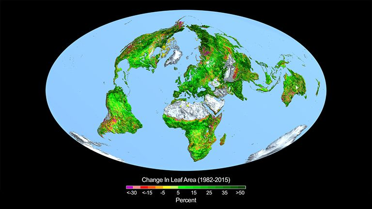 map of world showing leaf and vegetation growth