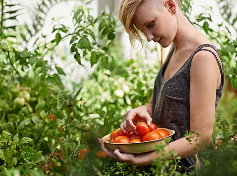 A woman looking at fresh tomatoes