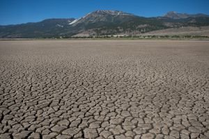 Little Washoe Lake on July 15, 2021 in Washoe City, Nevada. According to the Nevada Department of Wildlife, the lake dried up because of prolonged drought.