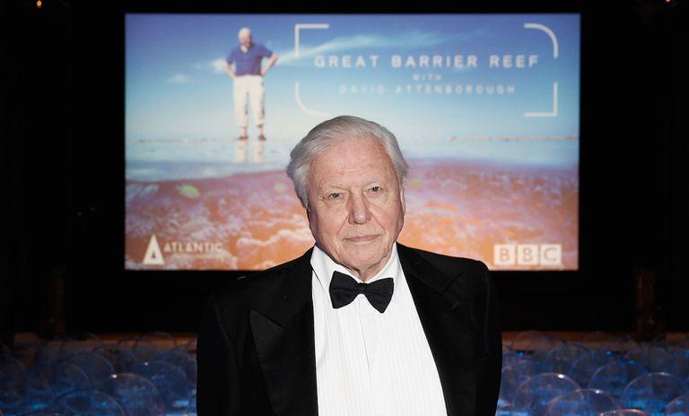 David Attenborough para representar la Gran Barrera de Coral en París