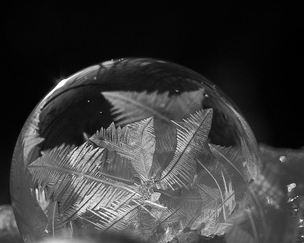 Feather-like frozen soap bubble