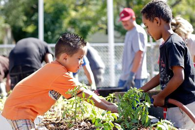 Students work and learn in a garden