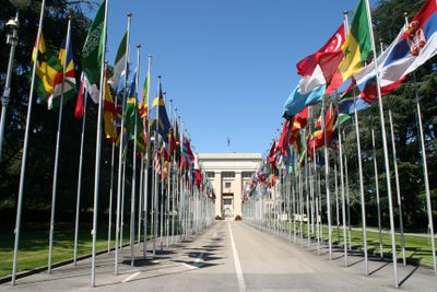 Flags on the road towards the United Nations.