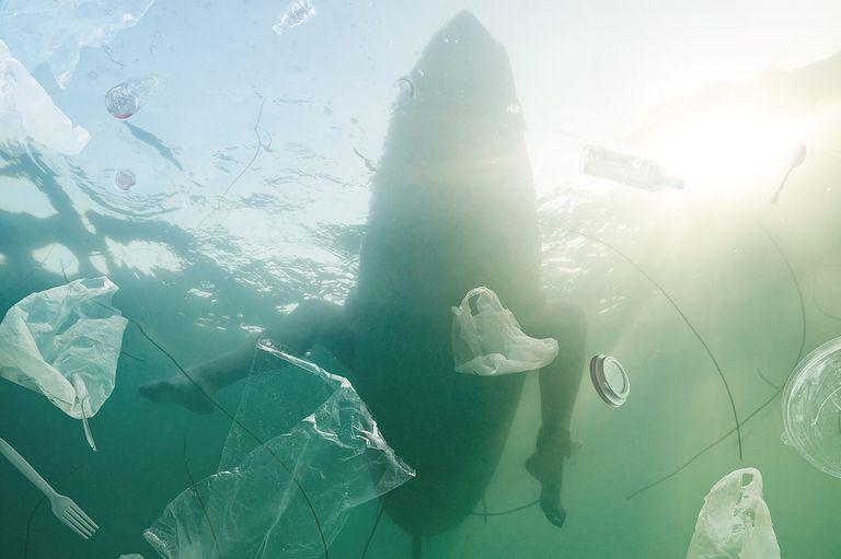El plan del G20 para detener la contaminación por plástico en los océanos no tiene dientes