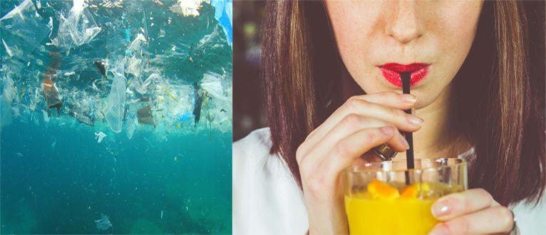 plastic straw pollution