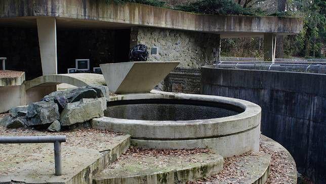 empty animal enclosure at defunct Vancouver Zoo