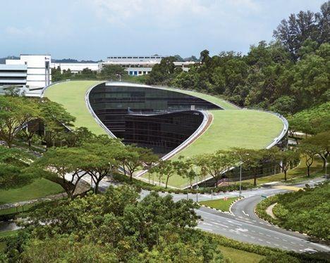 nanyang university green roof photo