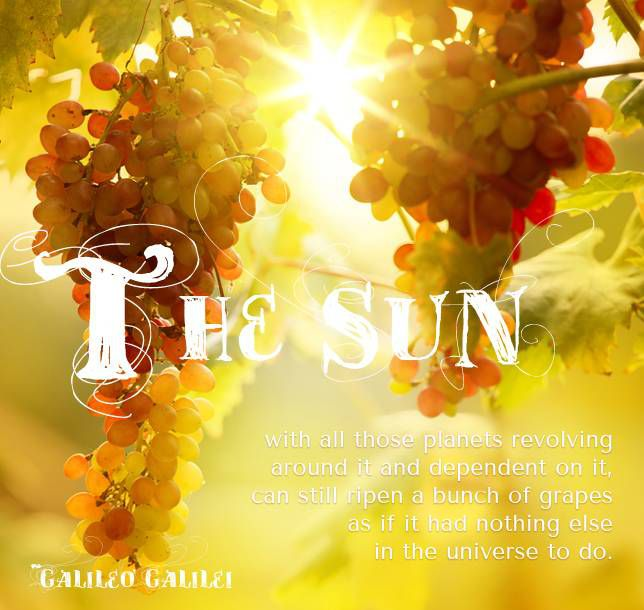 The sun, with all those planets revolving around it and dependent on it, can still ripen a bunch of grapes as if it had nothing else in the universe to do. ~Galileo Galilei