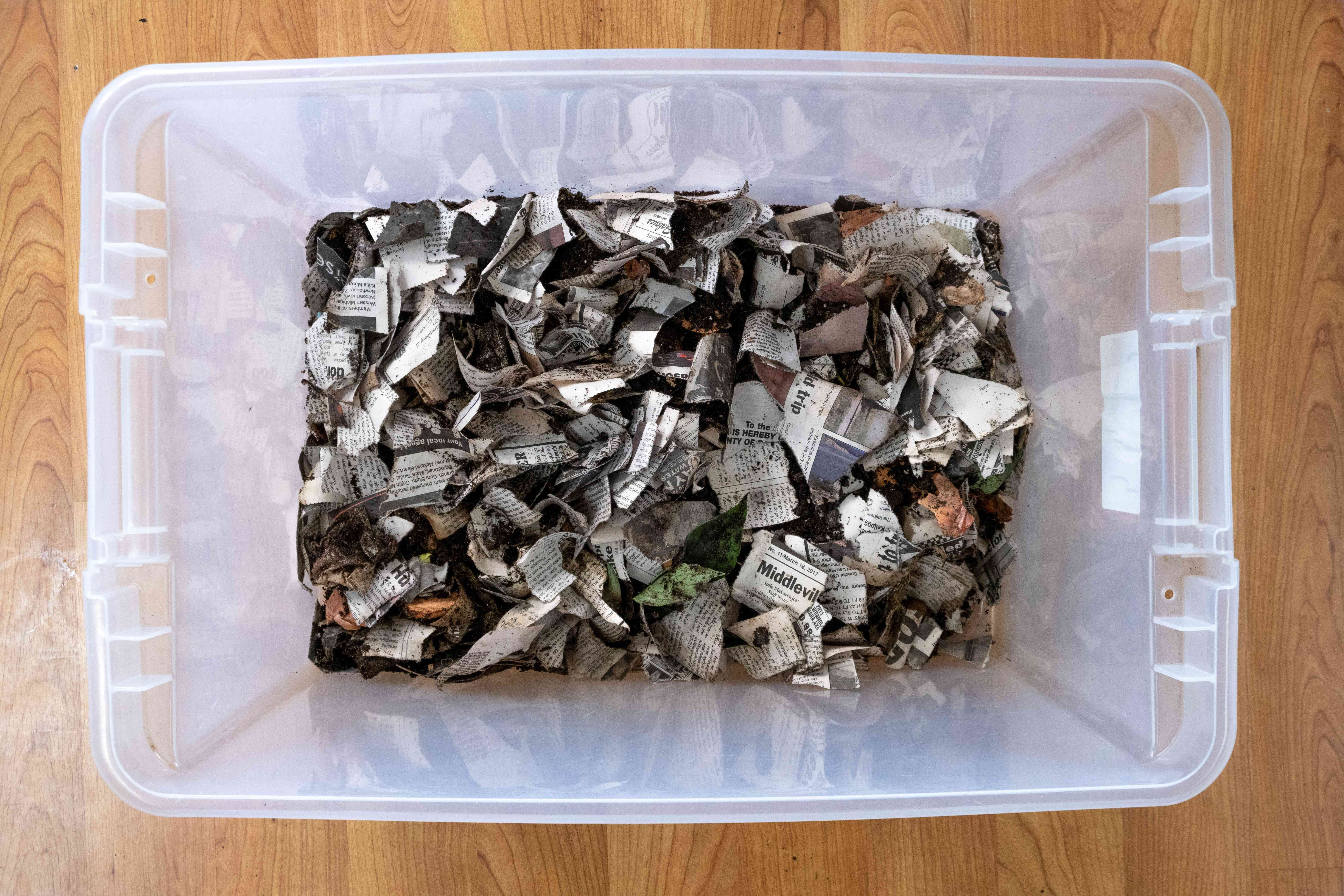 overhead view of plastic bin filled with wet newspaper