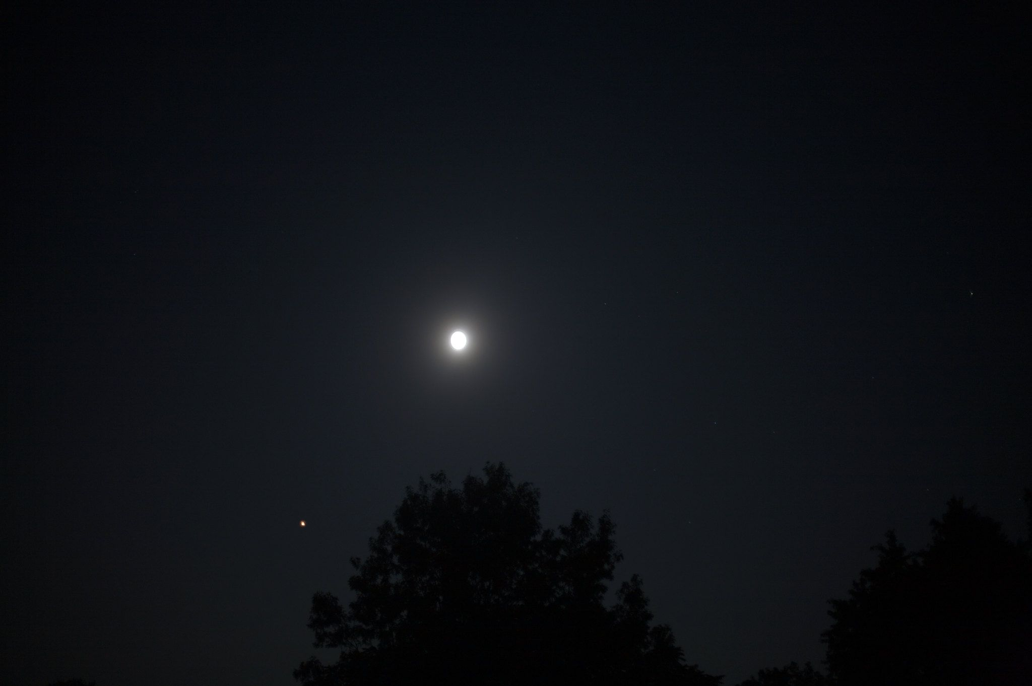 The Red Planet will be visible in the evenings through July 18.