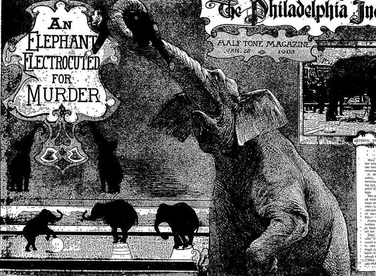 Thomas Edison: Inventor, genio ... ¿Asesino de elefantes?