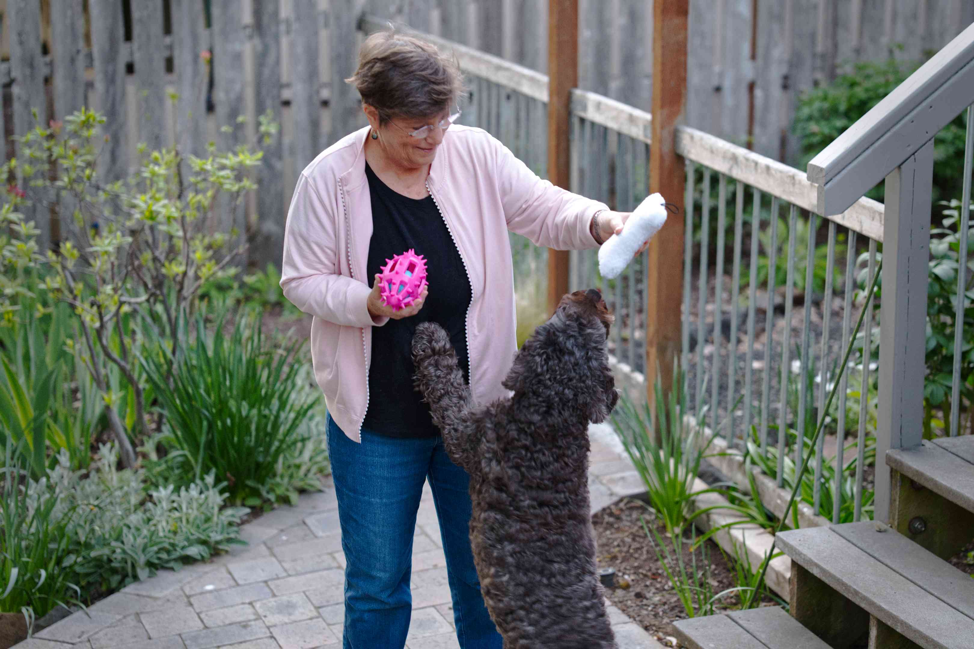 older woman in backyard holds dog toys out to gray curly-haired dog jumping up