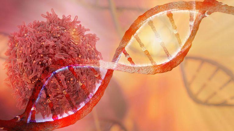 Estas nuevas pruebas tienen como objetivo encontrar el cáncer antes de que se diagnostique