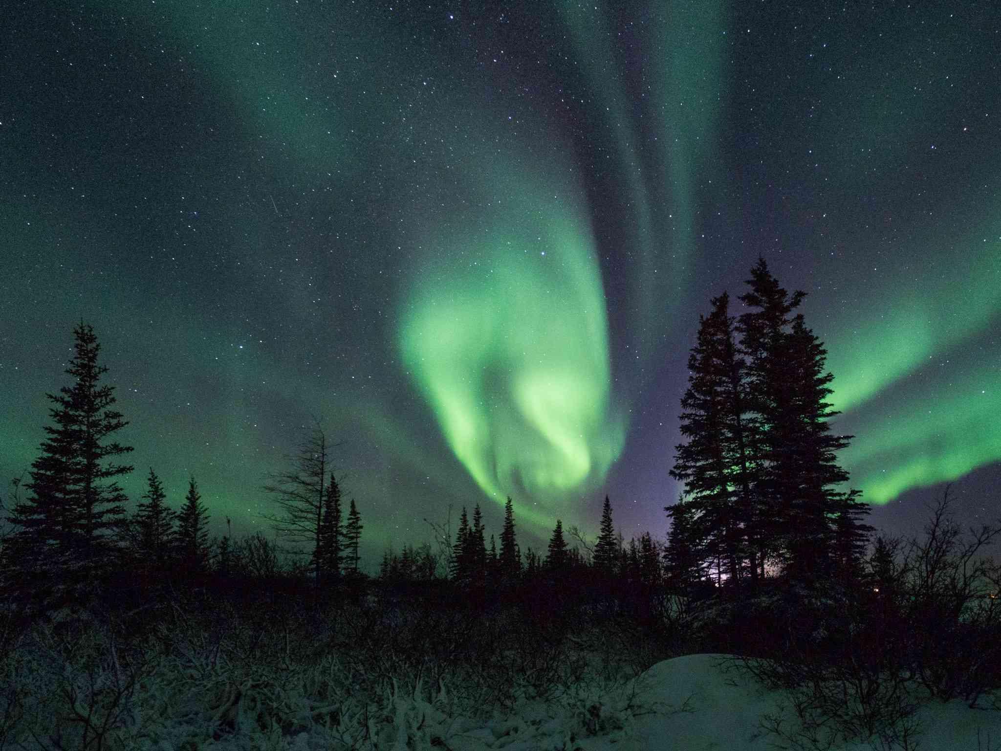Northern Lights Cam