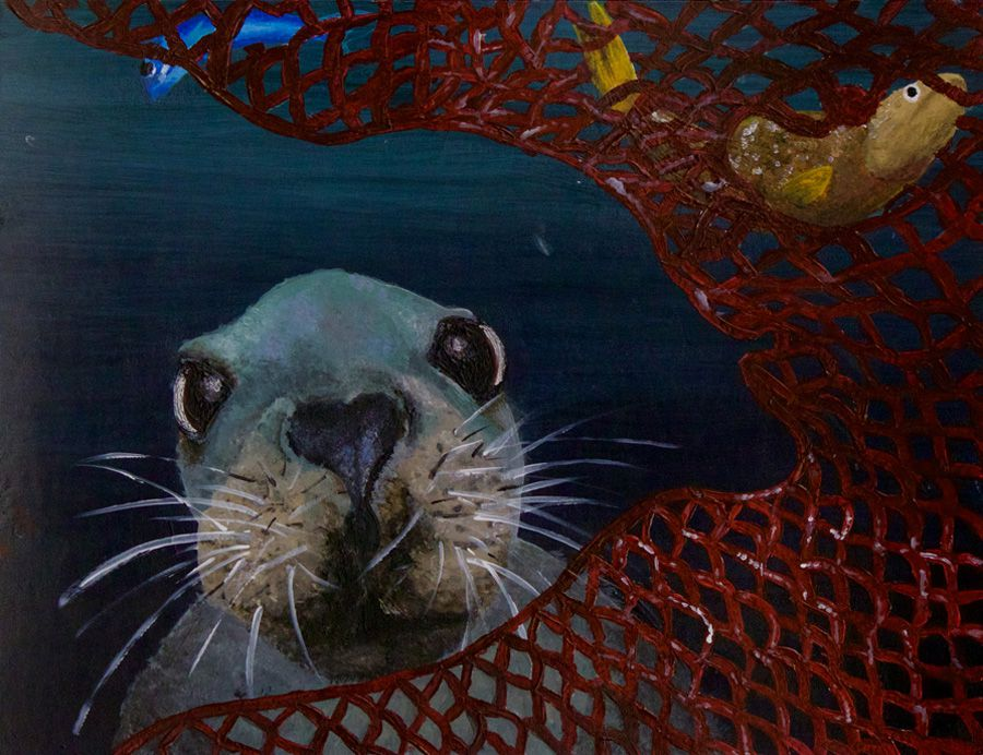 A painting of a stellar sea lion trapped in a net